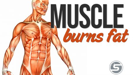 Muscle Burns Fat