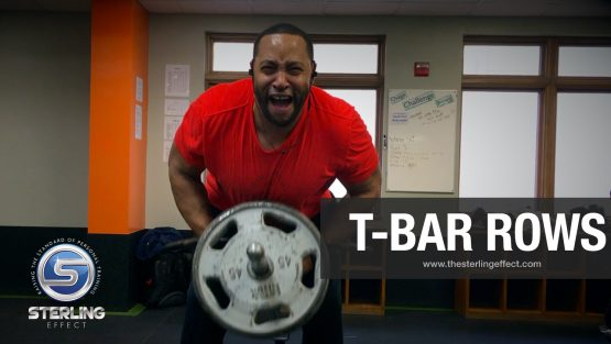 T-Bar Rows