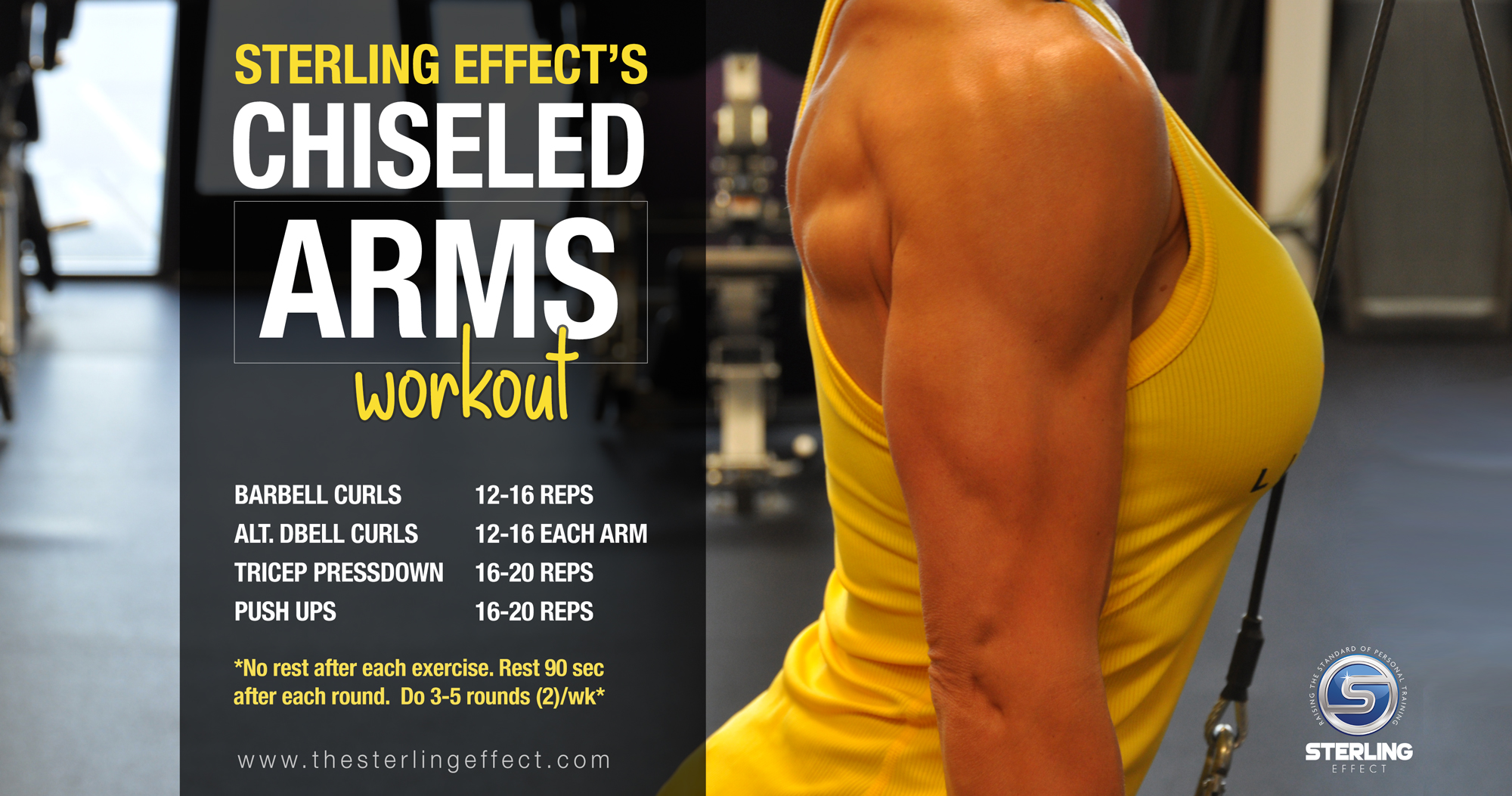 Sterling Effect's Chiseled Arms Workout